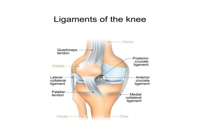 Multiple Ligament Knee Injuries (MLKI)